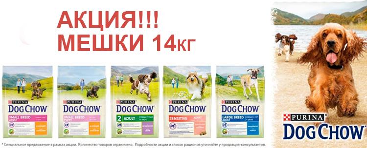 Dog Chow акция на мешки 14 кг