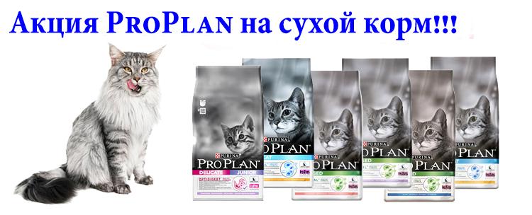 Скидка на сухой корм Purina Pro Plan 400гр, 1,5кг, 3кг, 10кг  для кошек