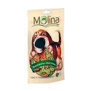 Molina лакомство для собак бисквиты косточка