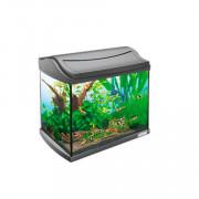 Tetra AquaArt Shrimps Discover Line аквариумный комплекс 20л