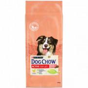 Dog Chow сухой корм для собак, взрослых, активных, курица