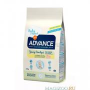 ADVANCE Young Sterilized корм сухой для стерилизованных кошек до 3 лет