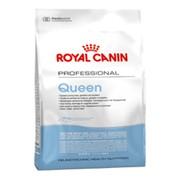 Royal Canin Queen корм для беременных и лактирующих кошек